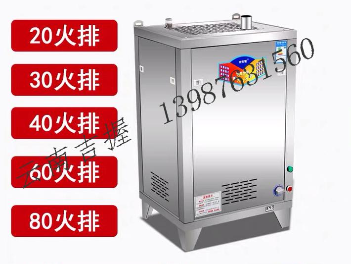 燃氣蒸氣發生器